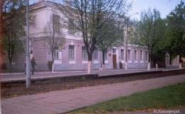 Пинская гимназия и публичные библиотеки